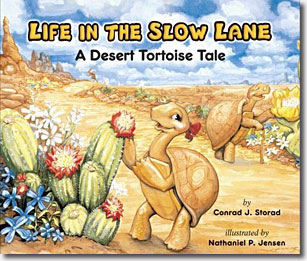 Life in the Slow Lane — A Desert Tortoise Tale